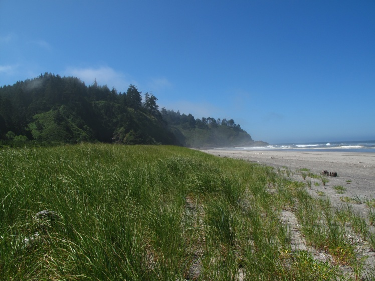 Washington coast north of North Head Lighthouse.